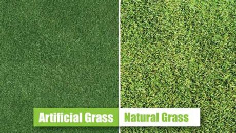 How should natural grass be watered? Differences Between Natural Grass and Artificial Grass