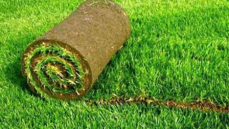 Natural Grass Mowing and Irrigation and Benefits of Artificial Grass!